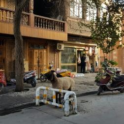 kashgar-scenes