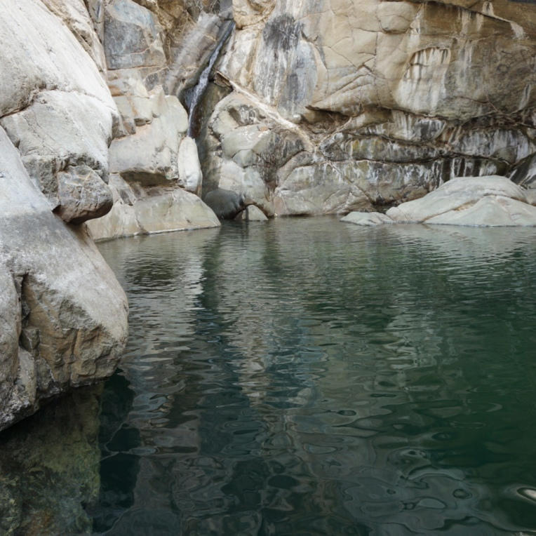 One of the freshwater pools in Wadi Wurayah.